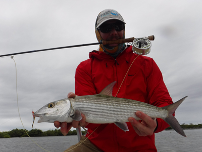 Eric Everett was just in Cuba, fly fishing for Bonefish. The bones found the DF Spawning Shrimp to be 'da Bomb