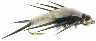 Black Gummy Stonefly Nymph