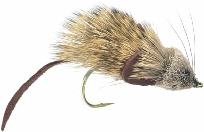 Mouse Rat Fly