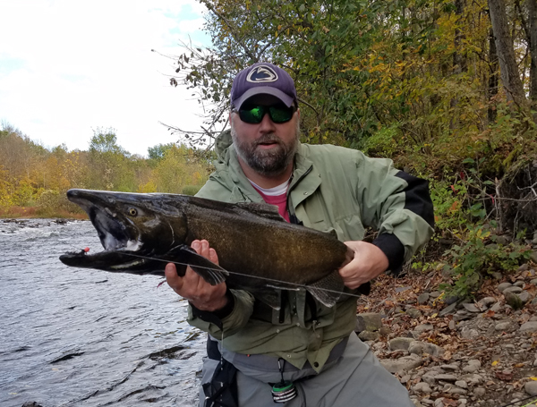 Rich Zoeltsch, of New York, landed a number of nice King Salmon while fishing a Purple Egg Sucking Leech. This was one of many.