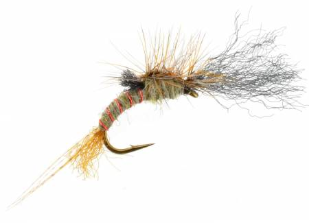 Green Drake Emerger Fly Fishing Fly
